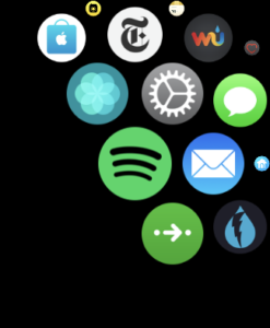 Icono de Spotify en el Apple Watch