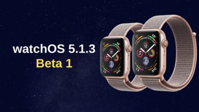 Actualización watchOS 5.1.3 Beta 1 ya disponible