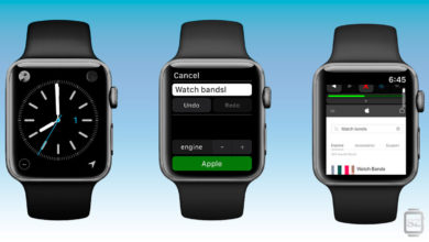 Navegador web Parrity para el Apple Watch